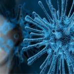 Die COVID-19 Pandemie, oder wie Globalisierung tötet!