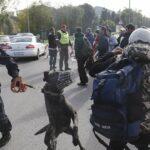 """Neue """"Willkommenskultur-Tipps"""": Keine Hunde und Flüchtlingen nicht widersprechen!"""