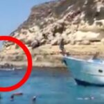 Lampedusa: illegale Migranten landen unter Badegästen an (Video)