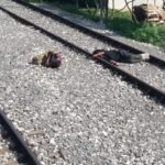 Bosnien: stockbesoffene Migranten schlafen auf den Gleisen des Bahnhofs Bihać