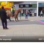 Wenn selbst (Polizei-)Pferde genug von der Homo-Propaganda haben (VIDEO)