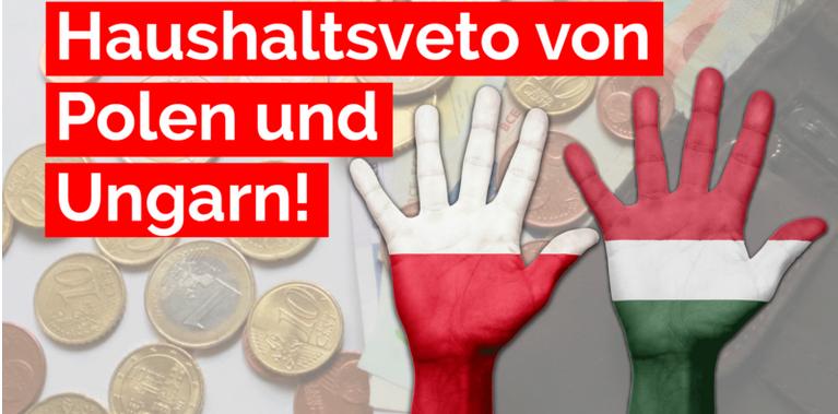 Po wymuszeniu przez UE: AfD popiera weto budżetowe Polski i Węgier!!!