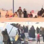 Hilfe für Kinder islamischer Terroristen endete für Gutmenschen im Steinehagel (Video)