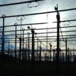 Erdbeben im europäischen Stromnetz – Totalzusammenbruch nur knapp verhindert