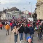 """""""Die Regierung hat verloren"""": Zehntausende trotzten Demonstrationsverbot in Wien"""
